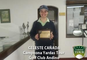 club-andino-celeste