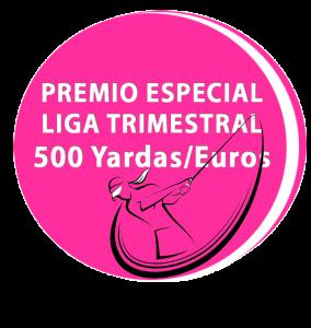 Premio Especial Liga femenina